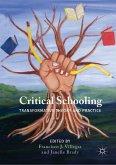 Critical Schooling (eBook, PDF)