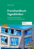Praxishandbuch Tageskliniken (eBook, ePUB)