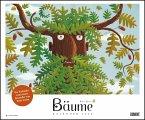 Bäume 2020 - DUMONT Kinder-Kalender - Querformat