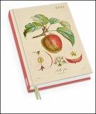 Apfel von Poiteau - Taschenkalender 2020 - Terminplaner mit Wochenkalendarium