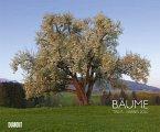 Bäume 2020 - Wandkalender 58,4 x 48,5 cm - Spiralbindung