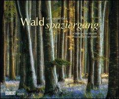 Waldspaziergang 2020 - Fotokunst-Kalender - Querformat 58,4 x 48,5 cm - Spiralbindung
