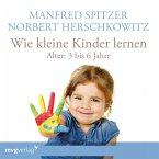 Wie kleine Kinder lernen - von 3-6 Jahren, 1 Audio-CD