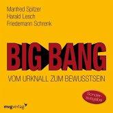 Big Bang: Vom Urknall zum Bewusstsein, 1 Audio-CD