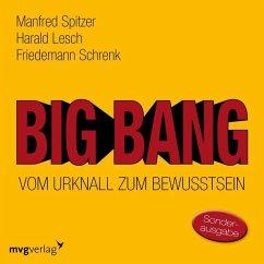 Big Bang: Vom Urknall zum Bewusstsein, 1 Audio-CD - Spitzer, Manfred; Lesch, Harald; Schrenk, Friedemann