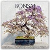 Bonsai 2020 - 16-Monatskalender