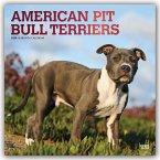 American Pit Bull Terriers 2020 - 18-Monatskalender mit freier DogDays-App