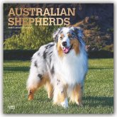 Australian Shepherds - Australische Schäferhunde 2020 - 18-Monatskalender mit freier DogDays-App