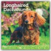 Longhaired Dachshunds - Langhaardackel 2020 - 18-Monatskalender mit freier DogDays-App