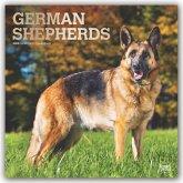 German Shepherds - Deutsche Schäferhunde 2020 - 18-Monatskalender mit freier DogDays-App