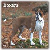 Boxers International - Boxer 2020 - 18-Monatskalender mit freier DogDays-App