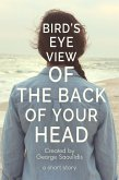 Bird's-Eye View of the Back of Your Head (The God Complex Universe) (eBook, ePUB)