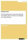 Die Entwicklung des stationären Handels im Zeitalter des E-Commerce am Beispiel der expert Bening (eBook, PDF)