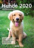 Hunde 2020 Wochenkalender