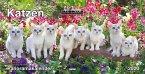 Katzen, Panoramakalender 2020
