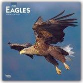 Eagles - Adler 2020 - 18-Monatskalender