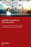 Identität, Orientierung und Lebenswelt (eBook, PDF)