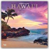 Hawaii 2020 - 18-Monatskalender mit freier TravelDays-App