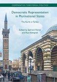Democratic Representation in Plurinational States (eBook, PDF)