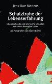 Schatztruhe der Lebenserfahrung (eBook, PDF)