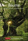 Bäume Kalender 2020