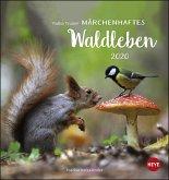 Trunov Waldtiere Postkartenkalender 2020