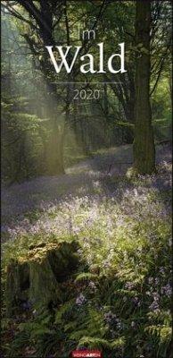 Im Wald - Kalender 2020