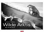 Wilde Arktis Kalender 2020