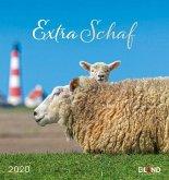 Extra Schaf 2020 - Postkartenkalender