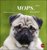 Mops. Was sonst! 2020 Postkartenkalender