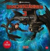 Dragons Broschurkalender - Kalender 2020