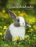 Kaninchenkinder Posterkalender 2020