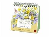 Schönheit der Natur Postkartenkalender 2020