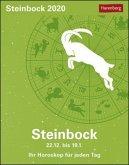 Sternzeichenkalender Steinbock 2020