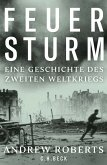 Feuersturm (eBook, ePUB)