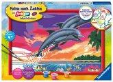 Ravensburger 28907 - Malen nach Zahlen, Welt der Delfine