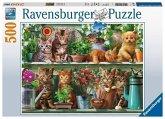 Ravensburger 14824 - Katzen im Regal, Puzzle, 500 Teile