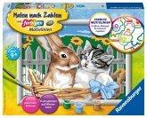 Ravensburger 28477 - Malen nach Zahlen, Putzige Freunde, Hase und Kätzchen im Korb