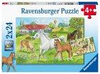Ravensburger 07833 - Auf dem Pferdehof, Puzzle, Kinderpuzzle, 2x24 Teile