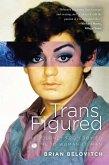 Trans Figured (eBook, ePUB)