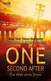 One Second After - Die Welt ohne Strom (eBook, ePUB)