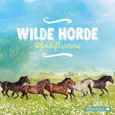 Pferdeflüstern (MP3-Download)