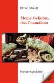 Meine Geliebte, das Chamäleon (eBook, ePUB)
