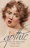 The gothic novel in Ireland, c. 1760-1829 (eBook, ePUB)