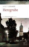 Herzgrube (eBook, ePUB)