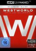 Westworld - Staffel 1: Das Labyrinth