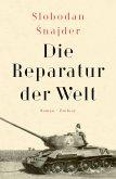 Die Reparatur der Welt (eBook, ePUB)