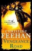 Vengeance Road (eBook, ePUB)