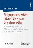 Zielgruppenspezifische Interventionen zur Energiereduktion (eBook, PDF)