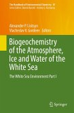 Biogeochemistry of the Atmosphere, Ice and Water of the White Sea (eBook, PDF)
